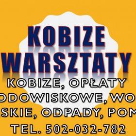 Raport Kobize, szkolenie, Wrocław, Opole, Legnica, Łódź, Poznań, Zielona Góra, Leszno, Kalisz, Częstochowa, Katowice, szkolenia, cena, termin